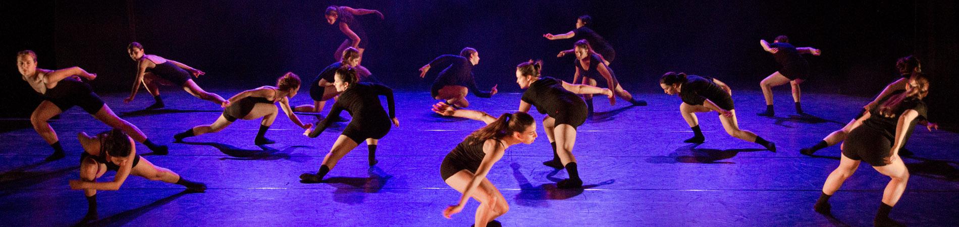לימודי תואר שני במחול M.Dance